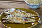 Fried mackerel fish — Stock Photo