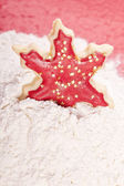 Star Christmas cookie — Stock Photo