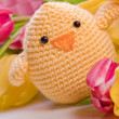 Foto Stock: Decoration chick and tulip