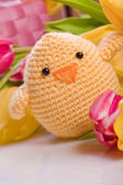 Decoration chick and tulip — Stock Photo