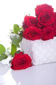 Bukett röda rosor — Stockfoto