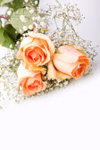 Bouquet of beautiful orange roses as a gift — Stock Photo