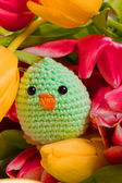 Chick and tulip flowers for easter holidays — Stock Photo