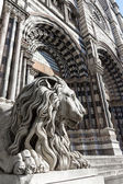 Lion statue of Saint Lorenzo church — Stock Photo