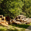 Wood Stock Pile — Stock Photo