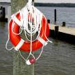 Stock Photo: Life Preserver on Post