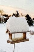 鳥の送り装置と雪 — ストック写真