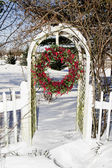 Cranberry Wreath Outdoors After Storm — Stock Photo