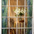 Weathered Window Pane View — Stock Photo