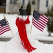 Patriotic Snow Man and Snowlady — Stock Photo