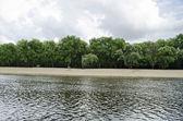 River beach — Stock Photo