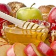 Still life closeup - challah, apples, pomegranate and bowl of ho — Stock Photo #19681709