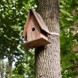 Birdhouse — Stockfoto #21385277