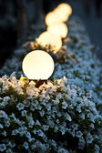 Street lamp on flower bed at night — Stock Photo