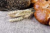Orecchie di pane e grano disteso sul licenziamento — Foto Stock