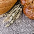 Bread and wheat ears lying on sacking — Stock Photo