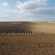 Plowed field — Stock Photo #24346755