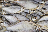 Background of dried fish — Stock Photo