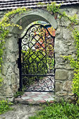 Wrought iron gate — 图库照片