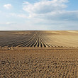 Plowed field — Stock Photo