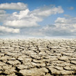 Drought land — Stock Photo #34842635