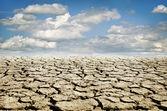 干ばつの土地 — ストック写真