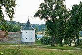 Krehivskyy Kloster — Stockfoto
