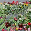 Stock Photo: Flowers in honor of those killed in Maidan