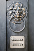 Door handle - lion's head — Stock Photo