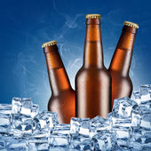 Three beer bottles — Stock Photo