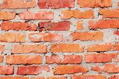 Brick wall texture — Stock Photo
