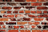 Brick wall texture — Foto Stock