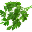 Parsley — Stock Photo #41231315