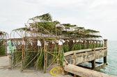 Tool for coastal fishery — 图库照片