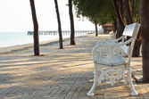 Chair in the park at seasid — Stok fotoğraf