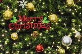 ツリーでメリー クリスマスの記号 — ストック写真