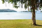 Landscaped lawns for leisure on a Kaeng Kra Chan lake — Stock Photo