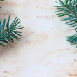 Stock Photo: Christmas background with old paper and fir branches