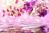 Elegant flowers over the water — Stock Photo