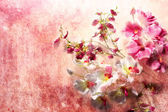 Pink and white orchids on a messy grunge background — Stock Photo