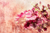 Pink orchids in grunge style — Stock Photo
