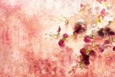 White orchids in grunge style — Stock Photo