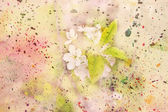 Blooming flowers and watercolor splatter — Stock Photo