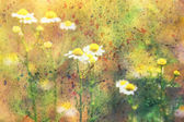 Grunge artwork with chamomile flowers and colorful watercolor strokes — Stock Photo