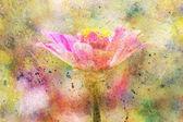 Hermosa flor de color rosa y salpicaduras de acuarela — Foto de Stock
