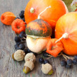 Autumn harvest: pumpkins, nuts, cape gooseberries. — Stock Photo