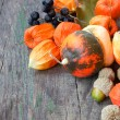 Pumpkins, nuts, cape gooseberries. beautiful autumn still life — Stockfoto