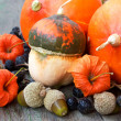 Pumpkins, nuts, cape gooseberries. autumn harvest — Stock Photo