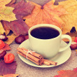 Hot warming cup of coffee on an autumn background — Stock Photo