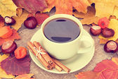 Warming cup of coffee on an autumn background — Stock Photo